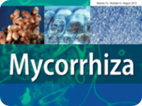 Revista Mycorrhiza